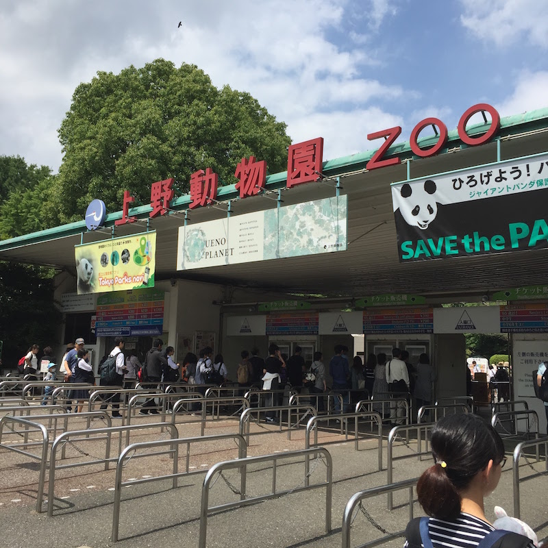 If you want to enjoy Ueno Zoo with comfort avoiding congestion, the weekday of May is best